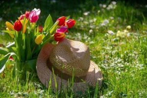 gardening2